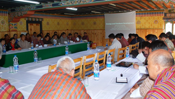 Consultation on Gewog Database System